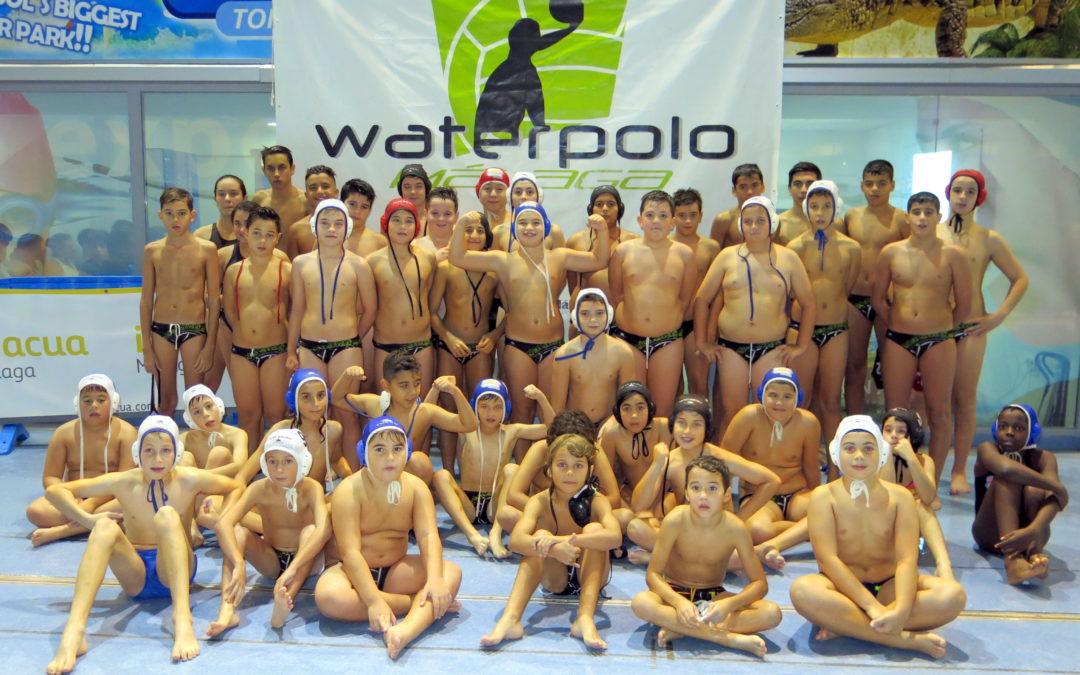 Un año de fortaleza y crecimiento para el #waterpoloenmalaga