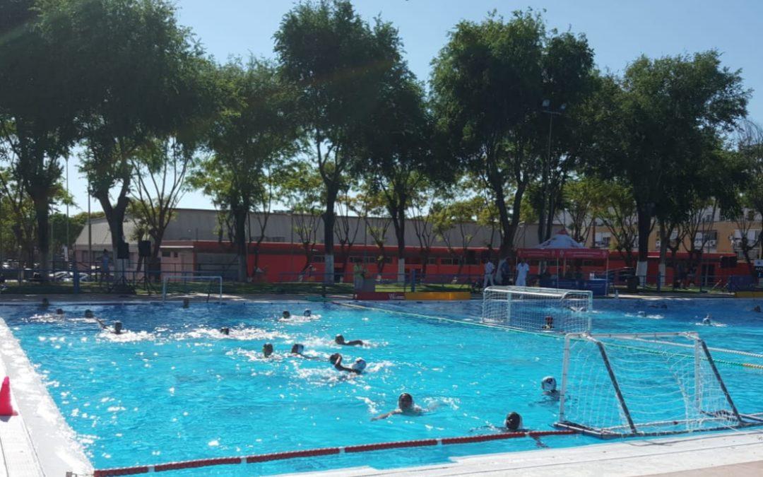 El Waterpolo Málaga alevín prepara su fase final del Andaluz en una jornada de partidos en Dos Hermanas