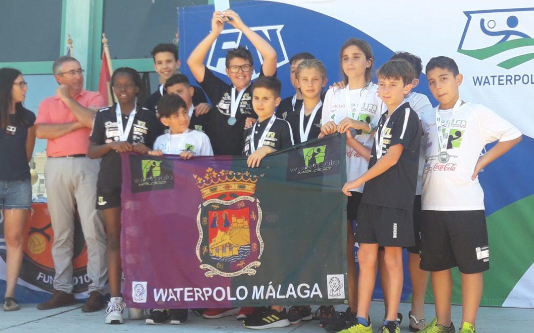 El Waterpolo Málaga, brillante subcampeón de Andalucía