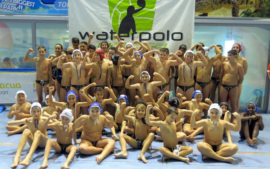 El Waterpolo Málaga fortalece su escuela para crear una cantera potente de deportistas